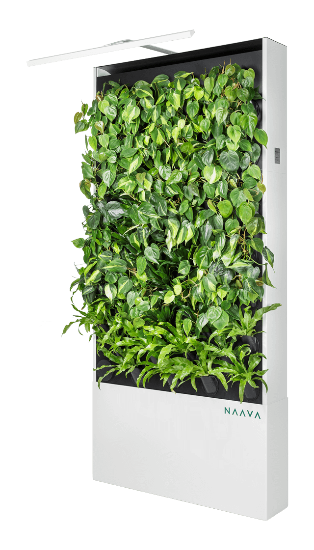 Naava One Slim vit