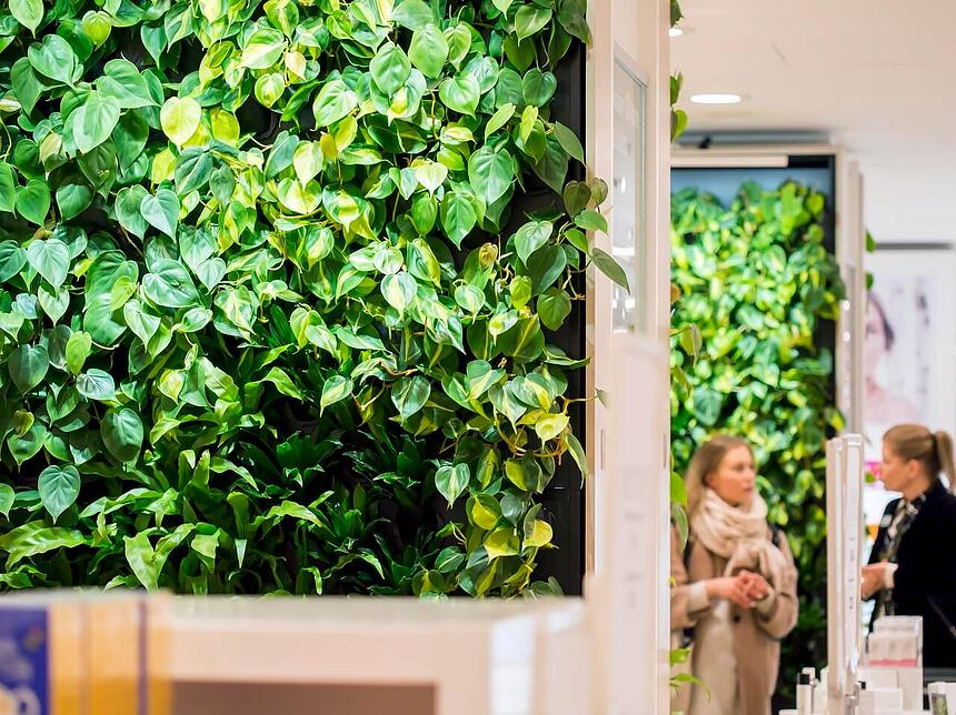 Naava green walls are the focal point of the department store.