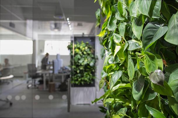 Green elements such as living walls, plants, and running water can liven up the office.