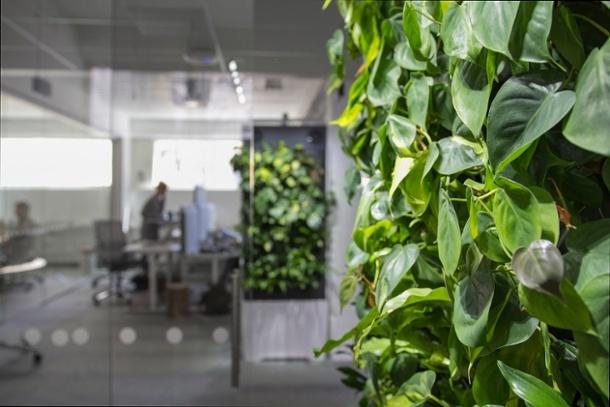 Vihreät elementit vähentävät stressiä ja kohottavat energiatasoja.