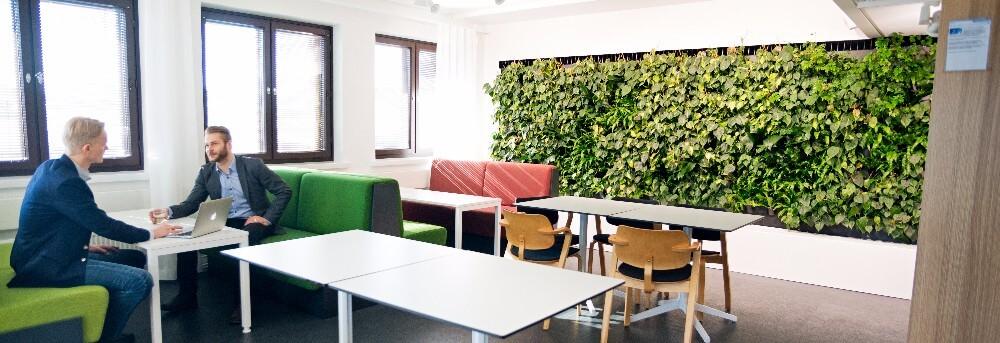 Leveä, elävistä kasveista koostuva älyviherseinä Ympäristöministeriön tiloissa.