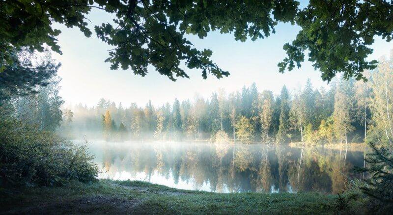 Luonnossa oleskelu vaikuttaa terveyteemme kohentavasti.