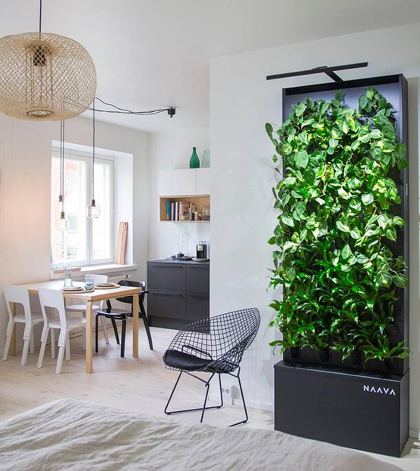 Smart green wall brings nature into urban home