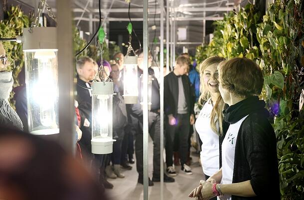 Plant specialists showing the greenhouse to visitors.