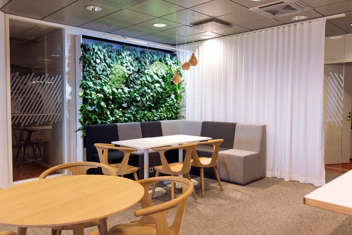Hallitsevien sävyjen ollessa harmaita ja ruskeita, kasvien vihreys korostuu.