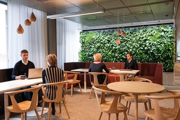 The wooden and green natural elements guarantee workplace satisfaction at Kolster.