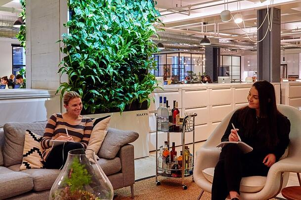 The natural greenery brought happiness to the office.