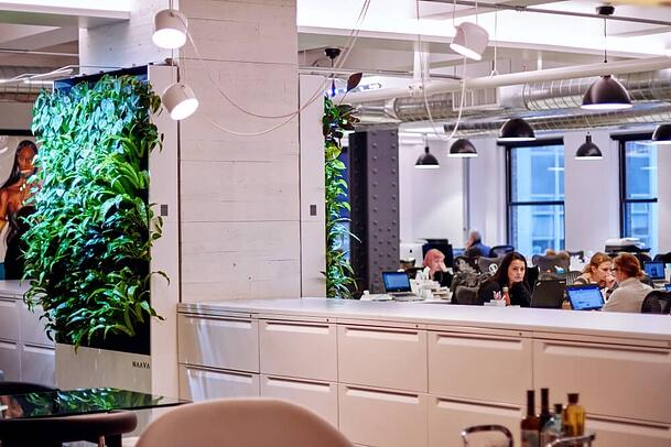 The office has a modern design with neutral colors, accentuated with living nature.