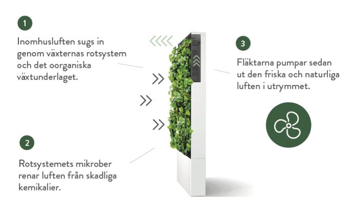 Naava biofiltrering, en naturlig luftrengöringsprocess