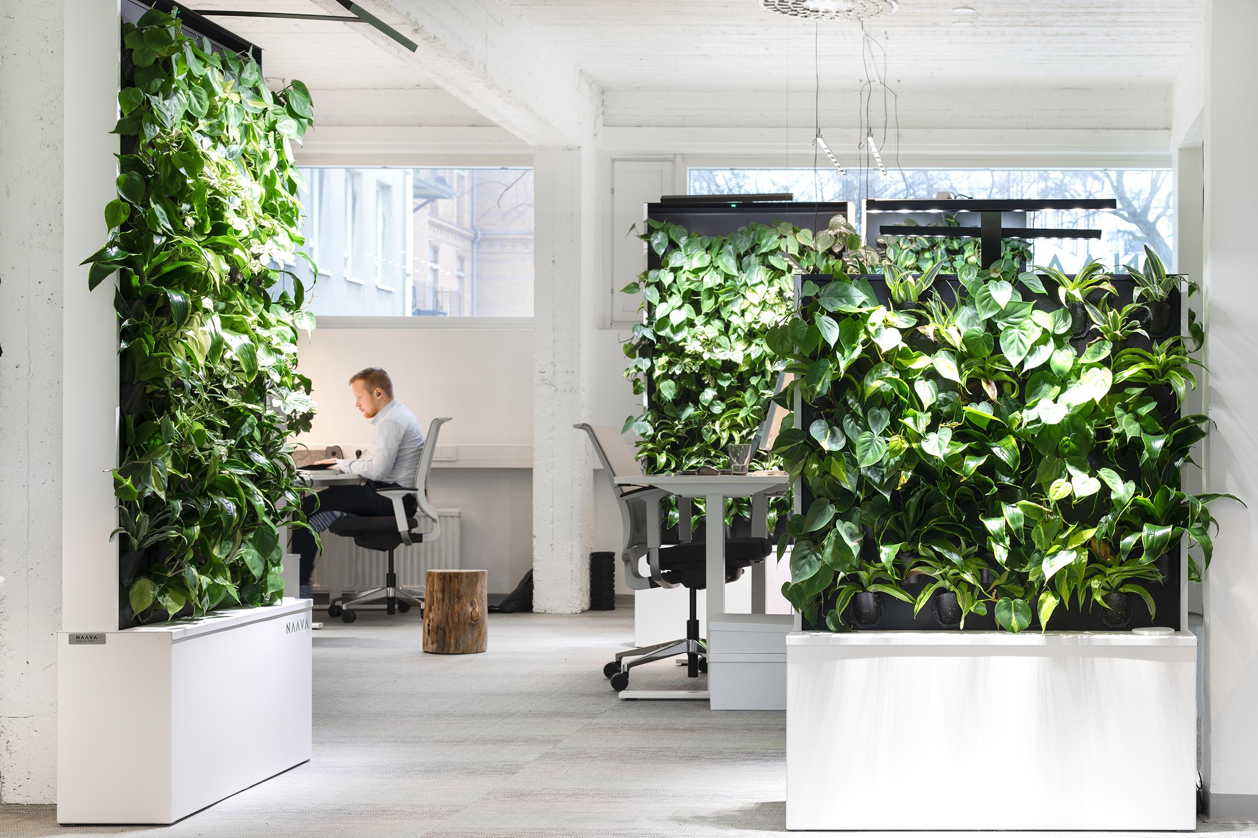 Naava HKI office
