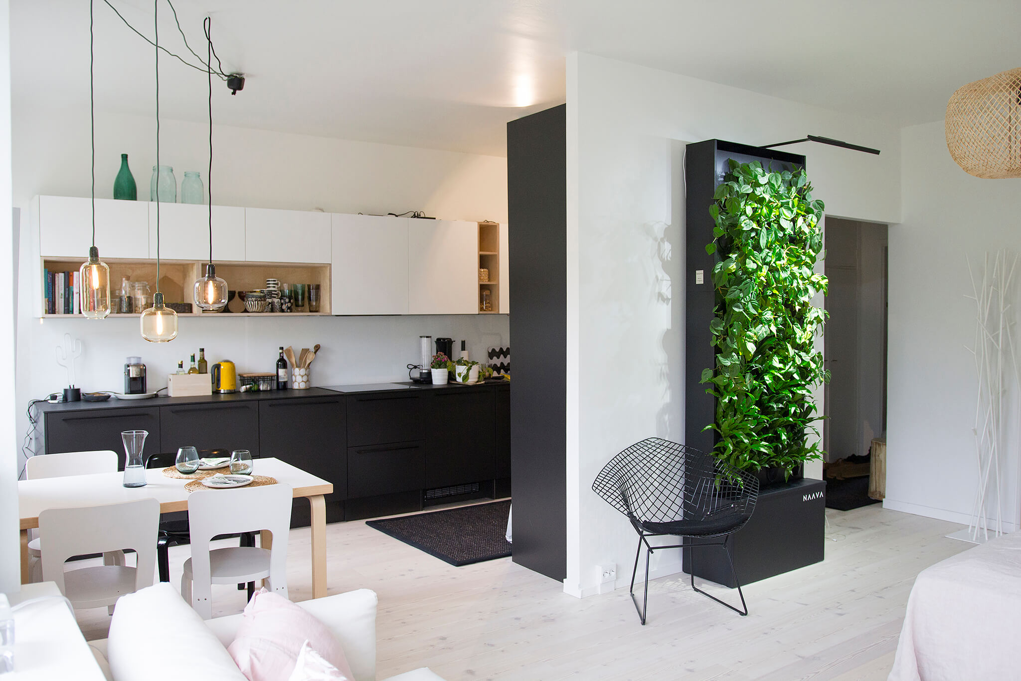 Naava at urban home