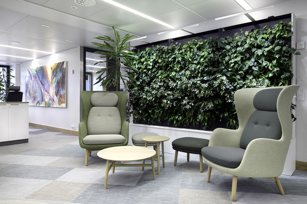 NIB natural office with Naavas