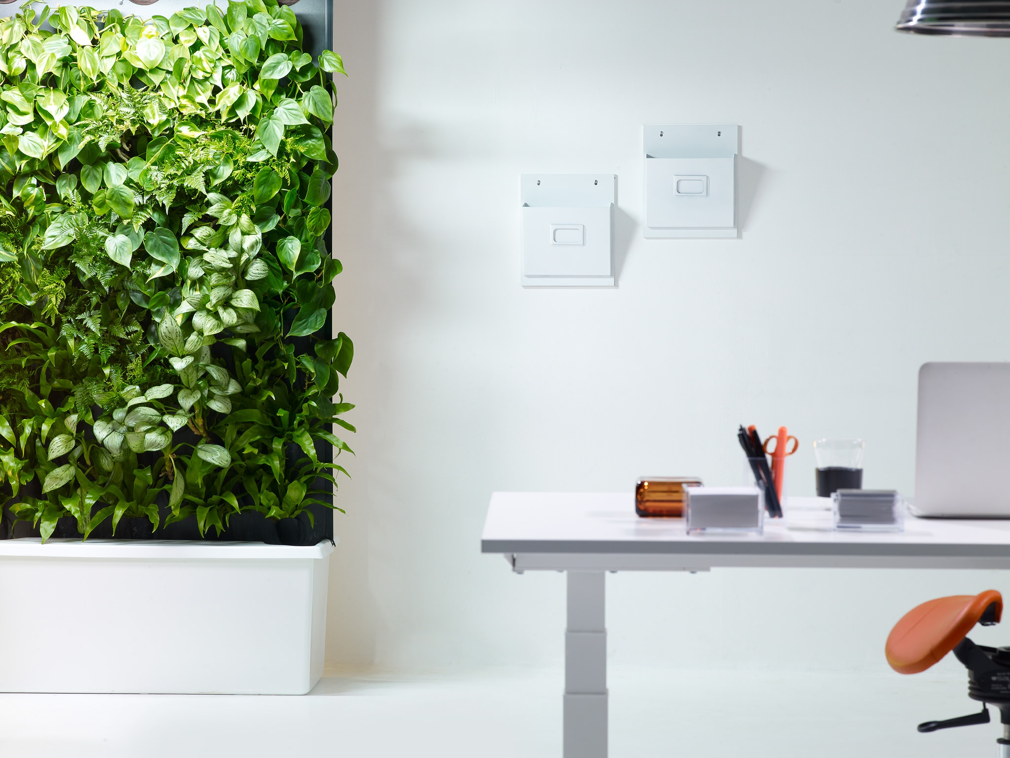 The bringer of Nordic forest air indoors, Naava, was awarded for design