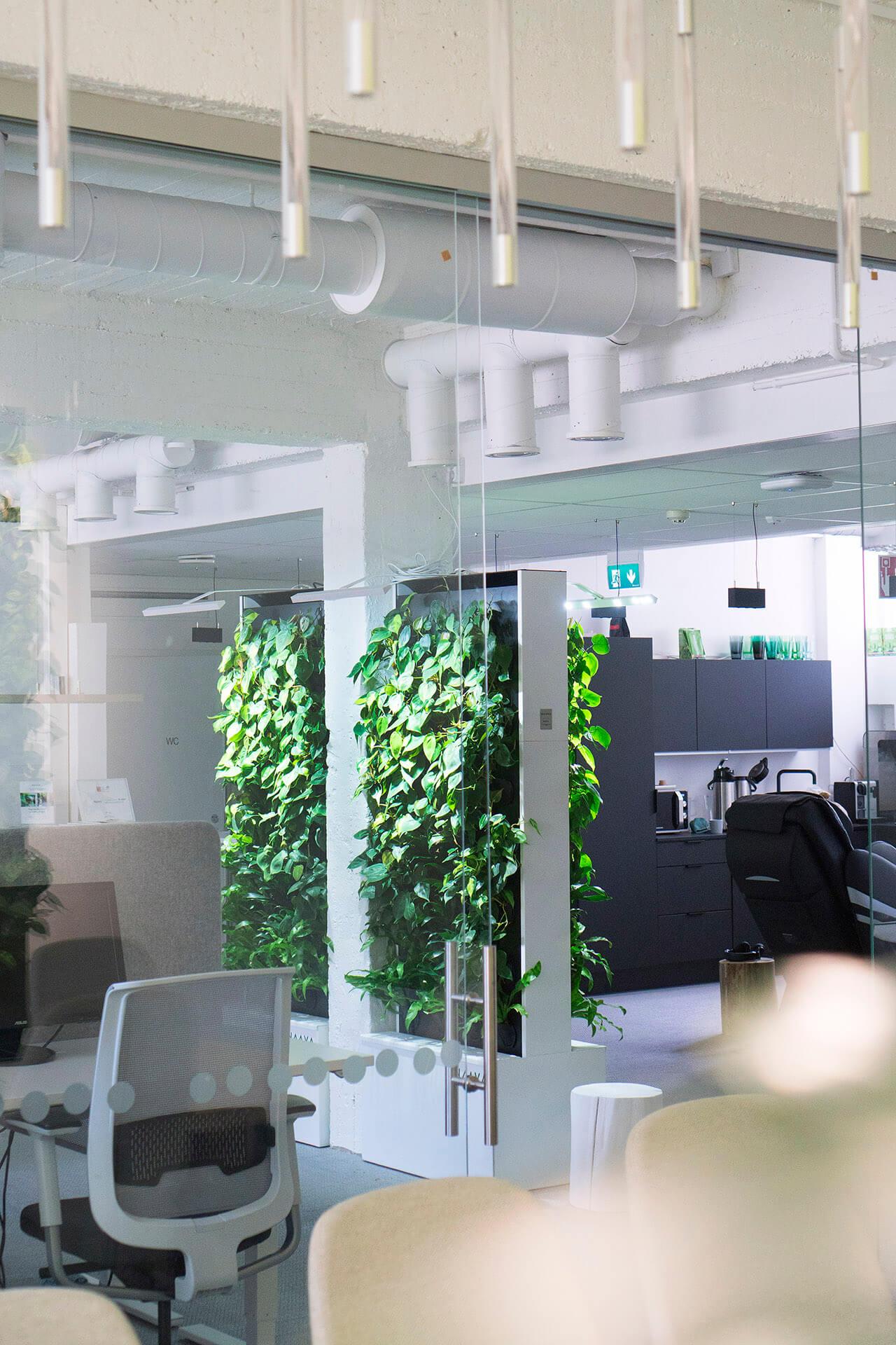 Maria office Naava Duo
