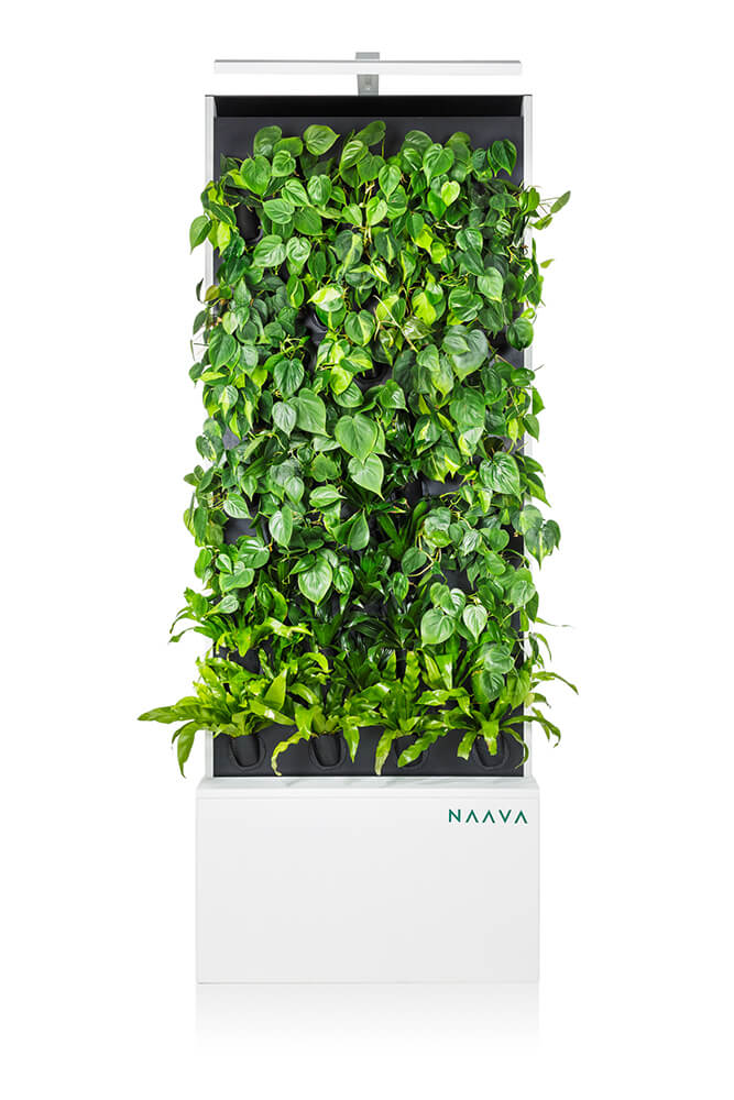 White Naava Duo Smart Green Wall from ahead
