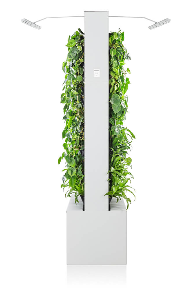 White Naava Duo Smart Green Wall from the side