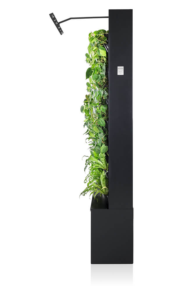 Graphite colored Naava One Green Wall from the side