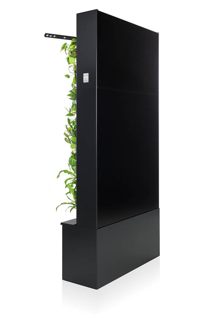 Graphite colored Naava One Green Wall from behind