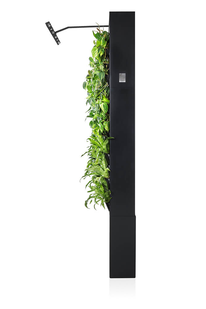 Graphite colored Naava One Slim Green Wall from the side