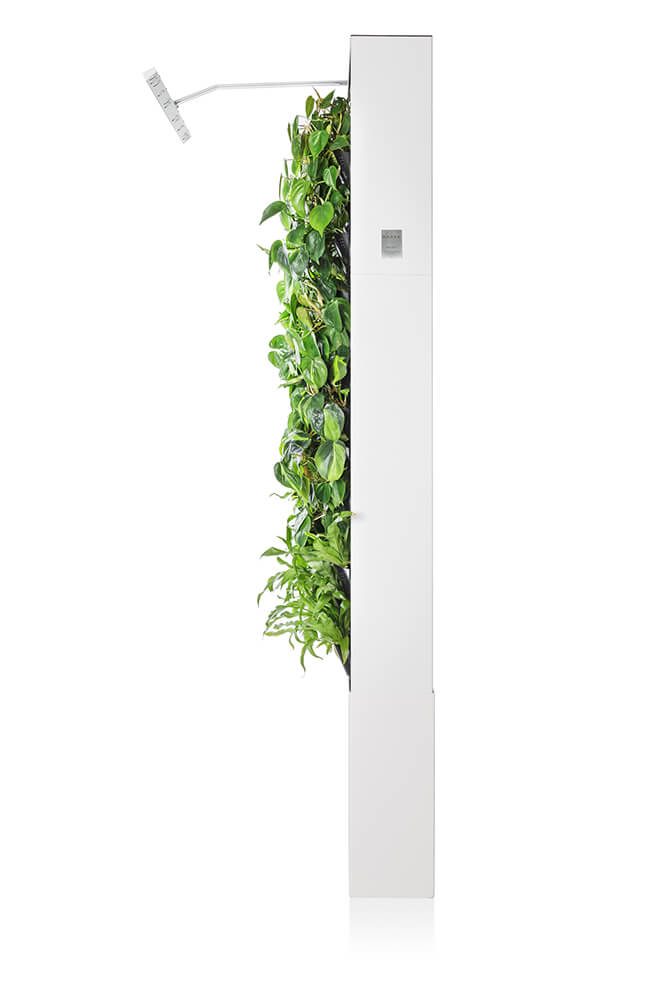 White Naava One Slim Green Wall from the side