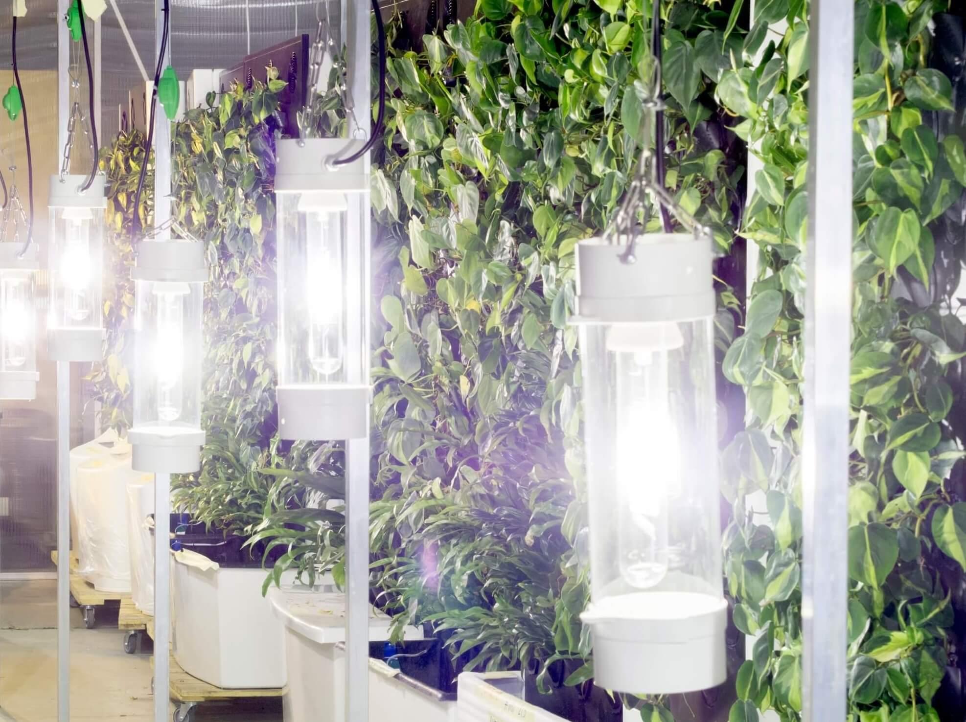 Naava-greenhouse-hero.jpg